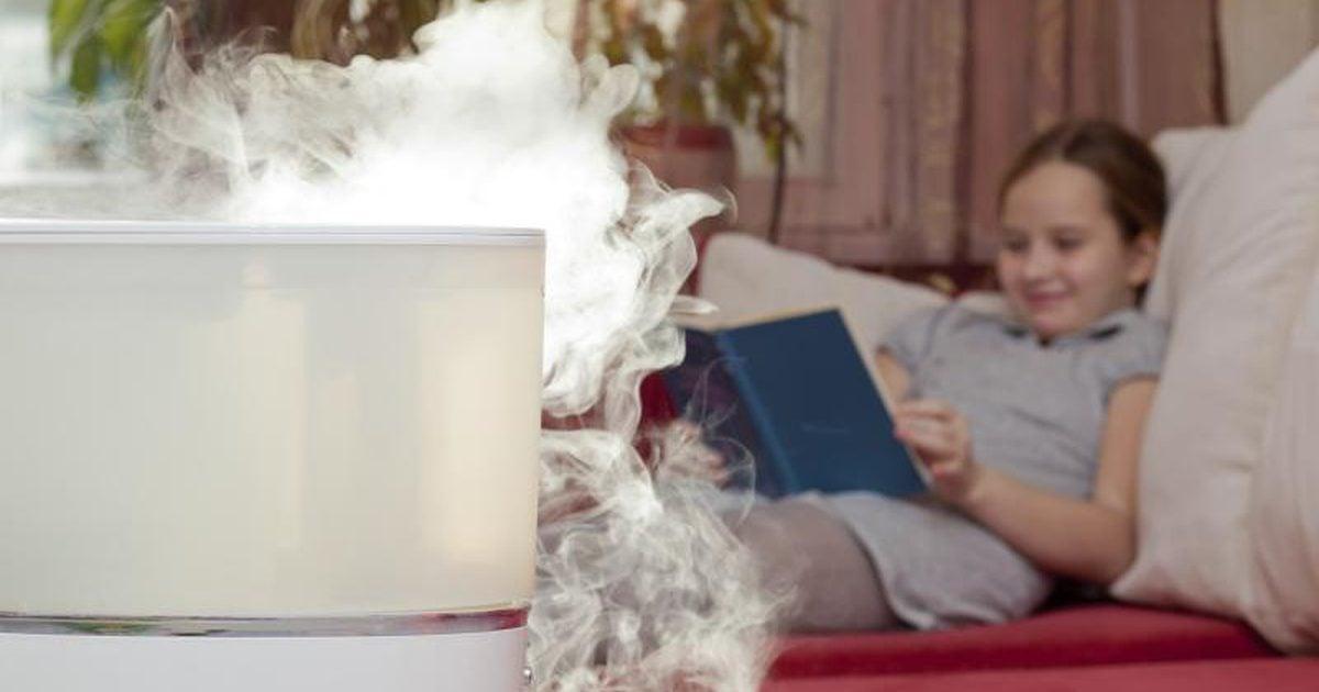 optimale luftfeuchtigkeit in räumen bestes wohlbefinden