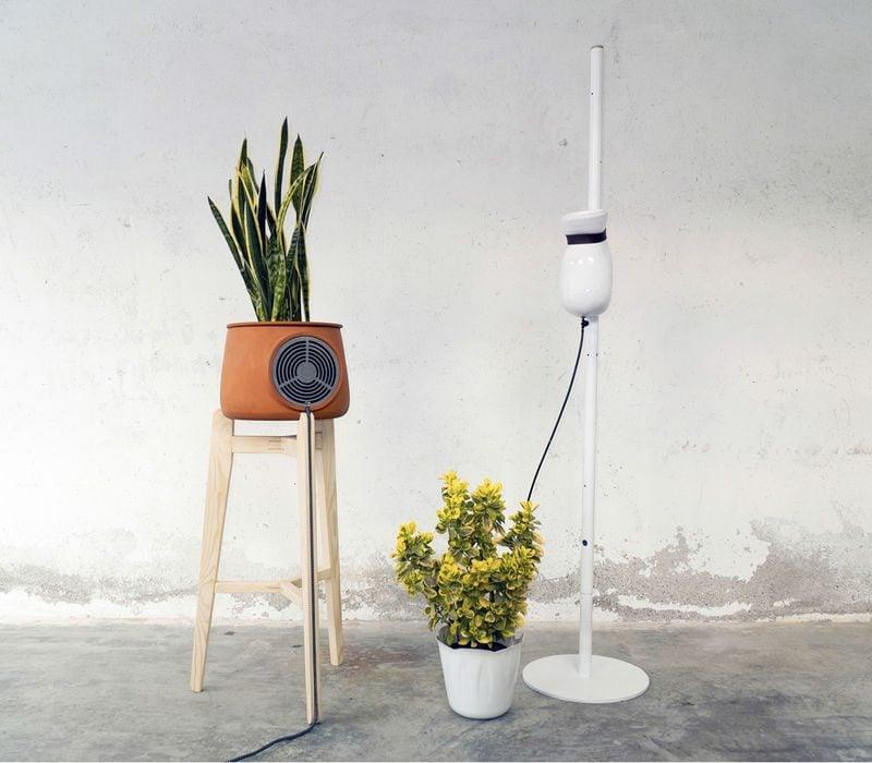 optimale luftfeuchtigkeit in räumen luftfeuchter blumen luftentfeuchter