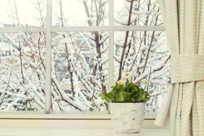 optimale luftfeuchtigkeit wohnräume winter regelmäßig lüften