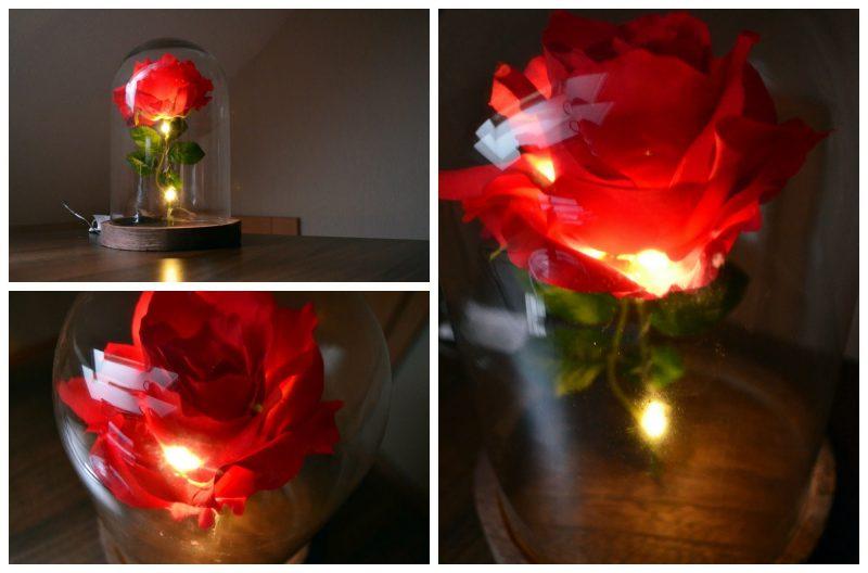 Rose basteln - Blume schenken, die ewig blüht