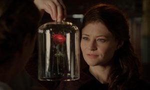 Rose basteln zum Valentinstag