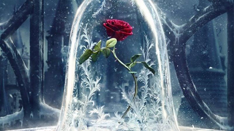 """Inspiriert von """"Das Schönste und das Biest"""" - Rose zum Valentinstag schenken"""