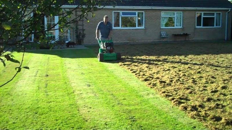 richtig vertikutieren rasen Gartenarbeit