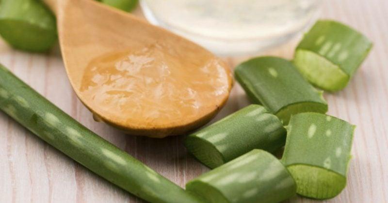 Gesichtsmasken selber machen Aloe Vera Maske gegen Pickel
