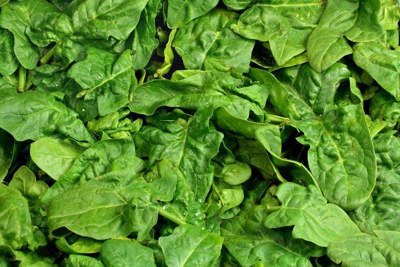 kohlenhydratarme Lebensmittel Spinat