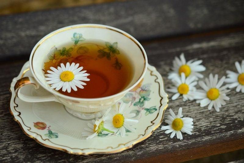 Ernährung ohne Kohlenhydrate Tee ohne Zucker trinken