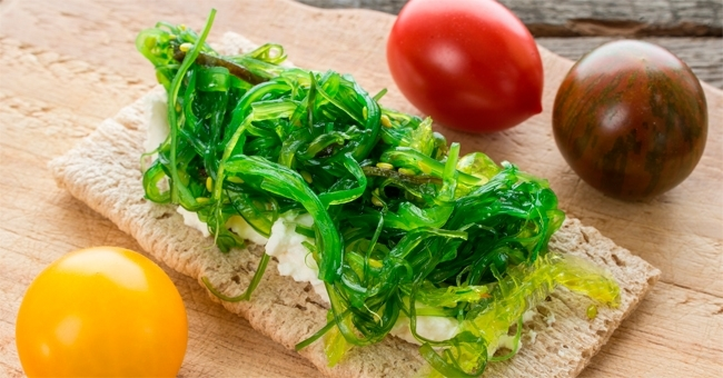 Warum Ist Seetang Gesund Gesunde Ernahrung Rezepte Zenideen