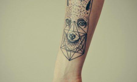 fuchs-tattoo7fd41ef3ca6424df4827a43195faa414-resized