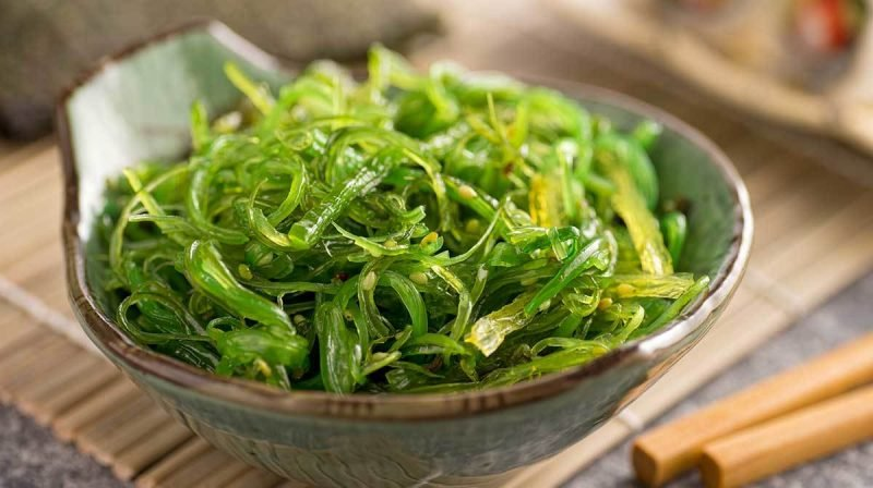 seetang gesund spirulina chlorella wakame algensalat nori blätter