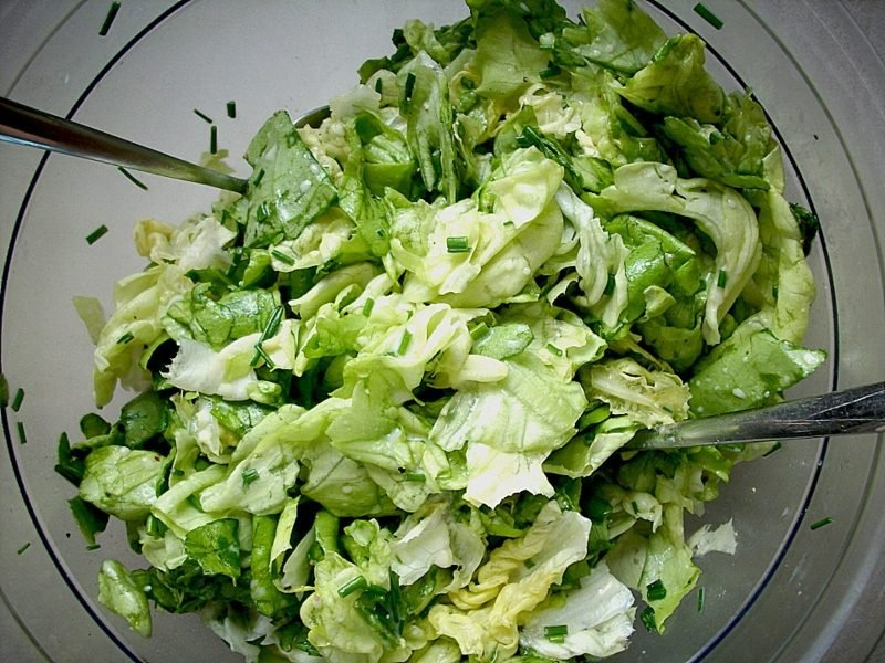 Essen ohne Kohlenhydrate grüner Salat