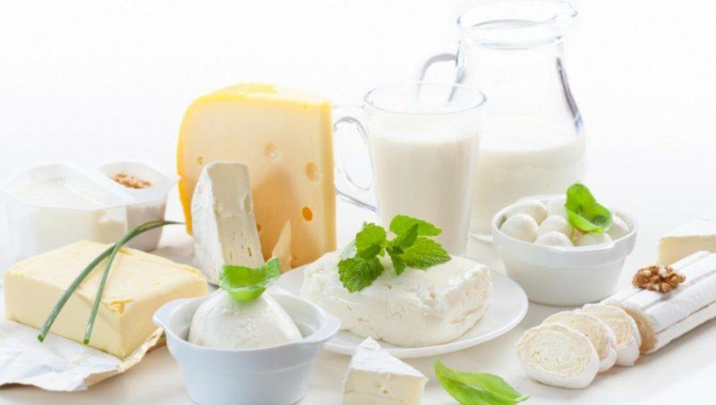 Diät ohne Kohlenhydrate Milch und Milchprodukte