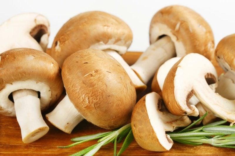 Ernährung ohne Kohlenhydrate Produkte Pilze