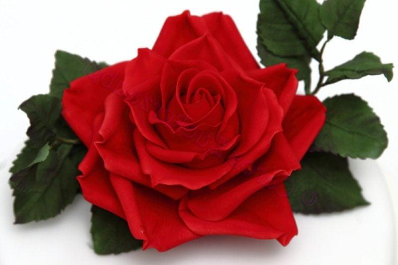 Valentinstag: Es müssen nicht immer Rosen sein