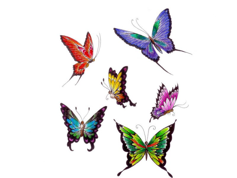 Tolle Schmetterling Färbung Vorlage Ideen - Beispielzusammenfassung ...