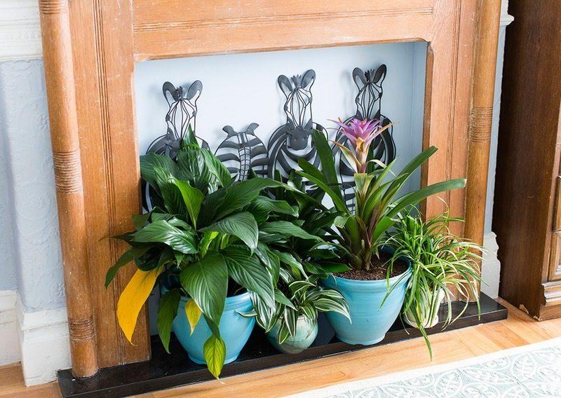 DIY Deko im Wohnzimmer : ersetzen Sie Kamin mit frischen Blumen