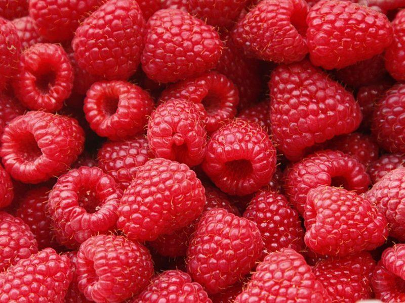 Diät ohne Kohlenhydrate zuckerarme Obstarten Himbeeren