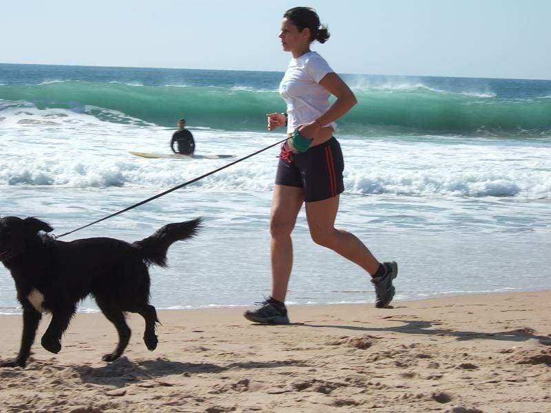 Joggen anfangen am Strand mit dem Hund