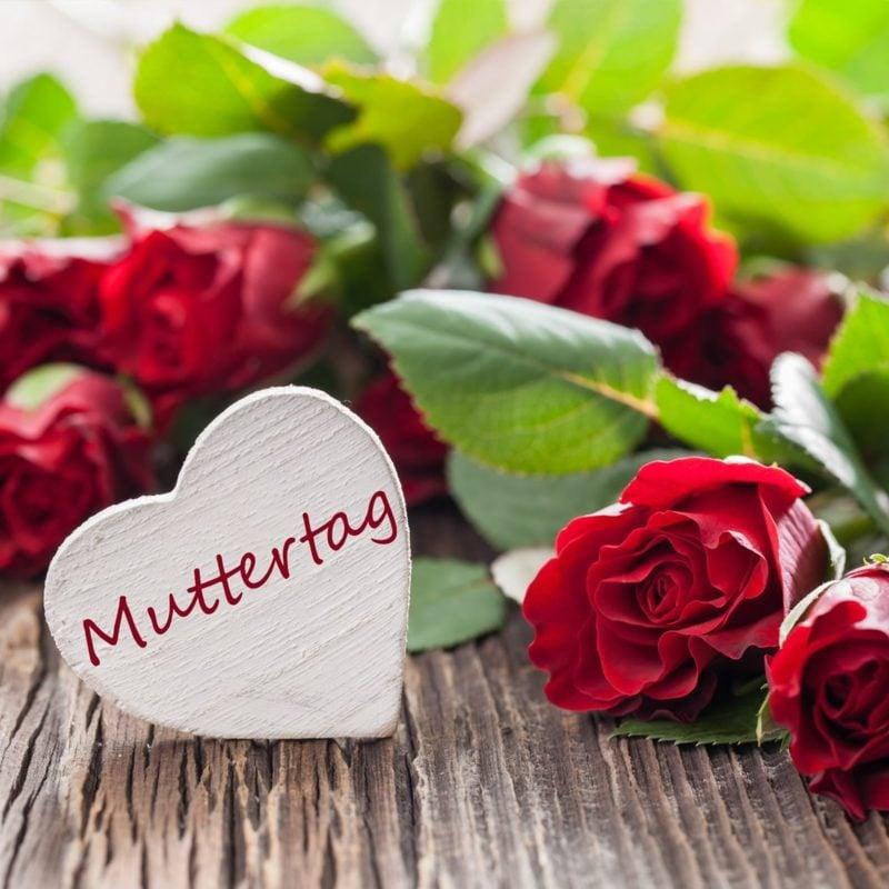 alles Liebe zum Muttertag der Mutter Blumen schenken