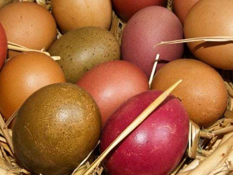 Ostereier färben kreative Ideen Naturfarben nutzen