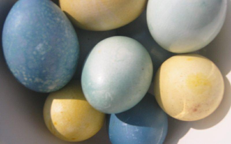 Ostereier färben mit Naturfarben gelb, blau und grau