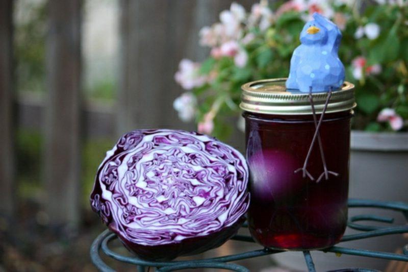 Ostereier färben mit Naturfarben Pflanzensud aus Rotkohl