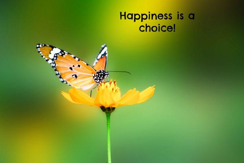 Sprüche zum Aufmuntern auf Englisch Glück ist eine Auswahl