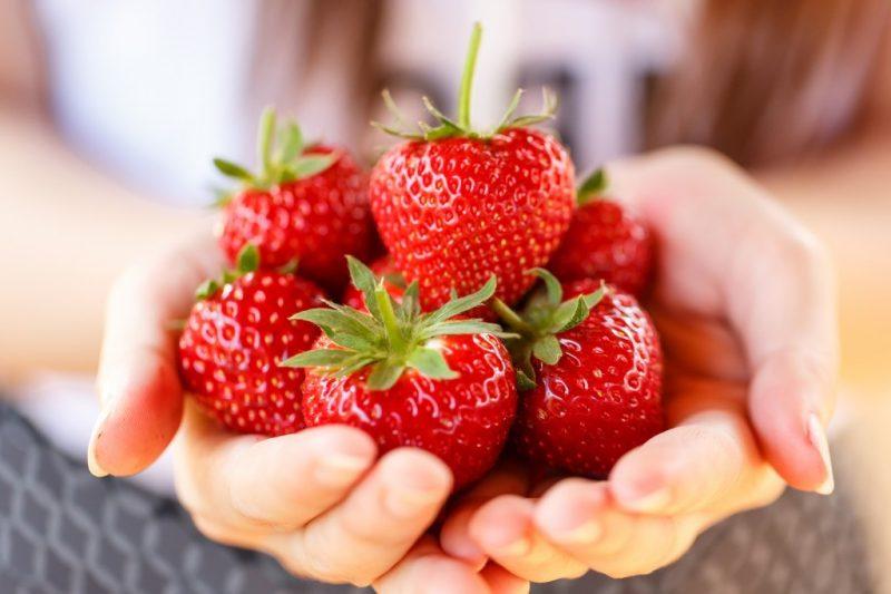 erdbeeren gesund ihre positive wirkung im berblick und erdbeereis rezept gesunde ern hrung