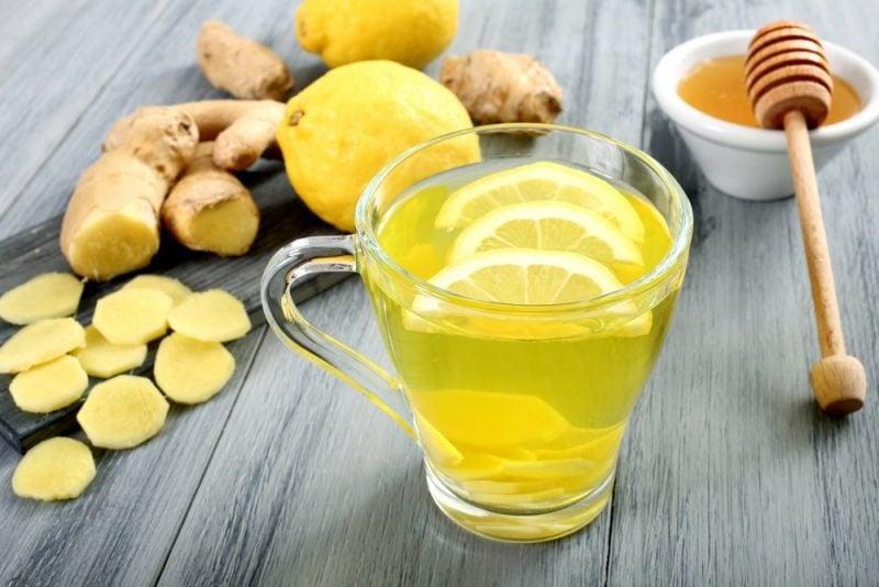 Ingwer Limonade selber machen