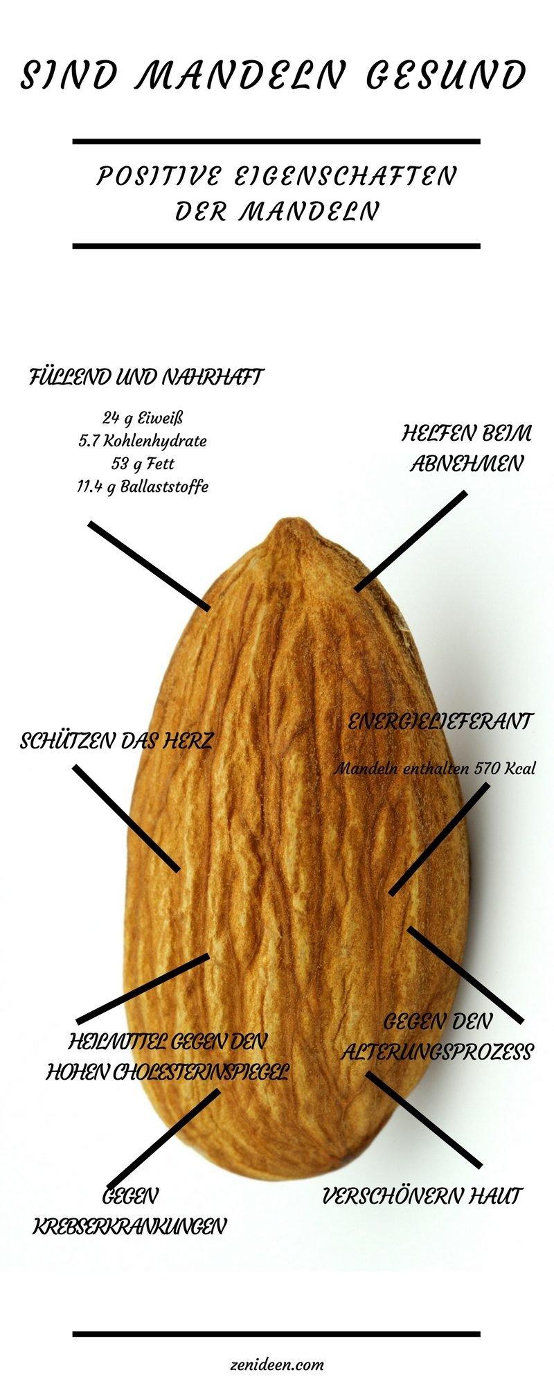 mandeln gesund mandeln nährwerte mandeln inhaltsstoffe