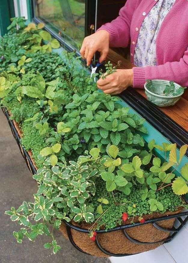 kräutergarten anlegen gartengestaltung garten gestalten kräuterspirale anlegen anleitung