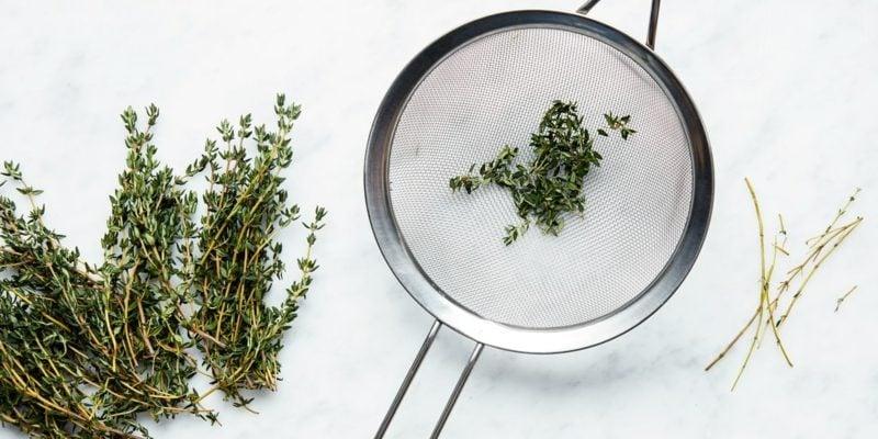 Thymian – ein Kraut für Küche und Gesundheit