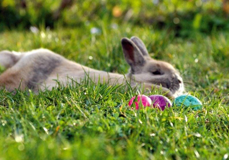 Bedeutung der Osterfeiertage