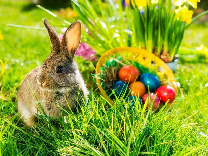 Bedeutung Ostern