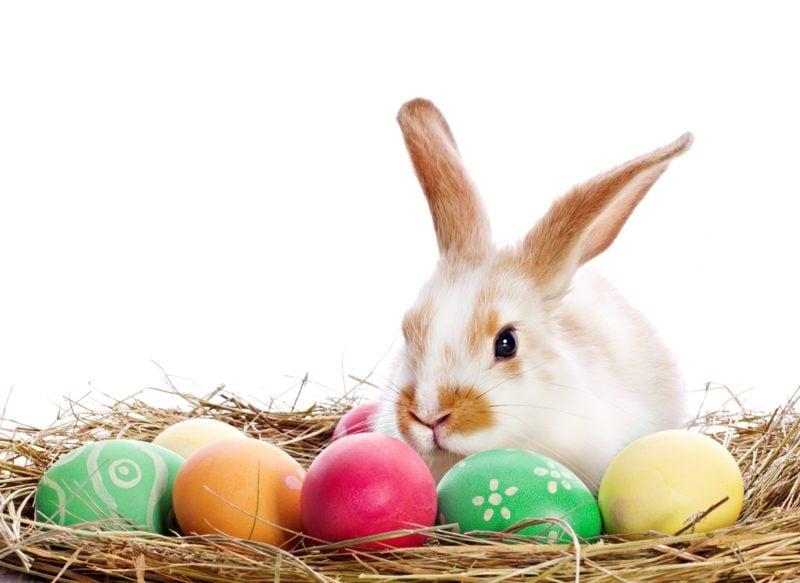 die Bedeutung von Ostern als Familienfest Herkunft von Ostern