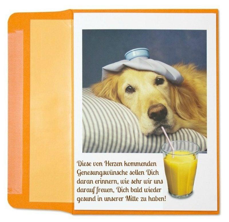 Gute Besserung Bilder lustige Grusskarte