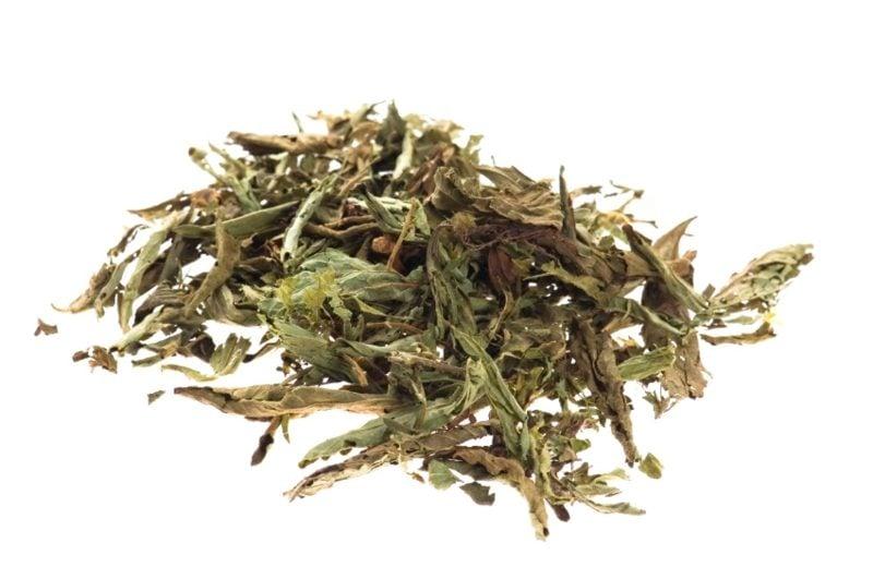 Stevia Nährwerte keine Kalorien Blätter trocken