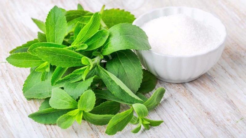 Stevia gesund Extrakt kalorienfrei