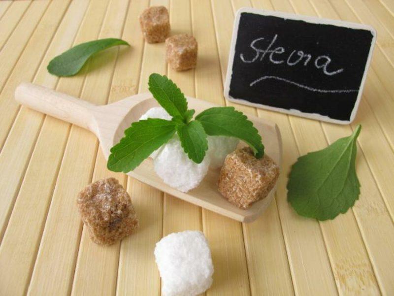 Steviolglycoside Alternative zu Zucker gesund