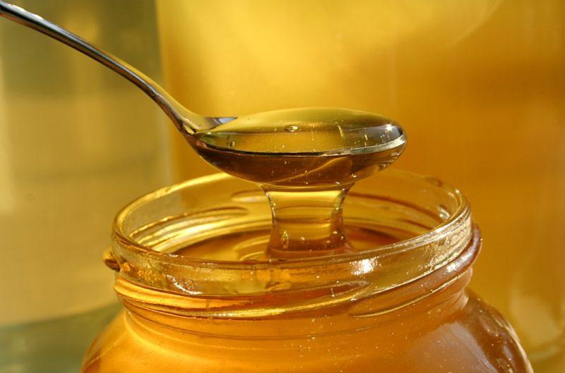 Honig gesund Süssstoff Zuckeresatz