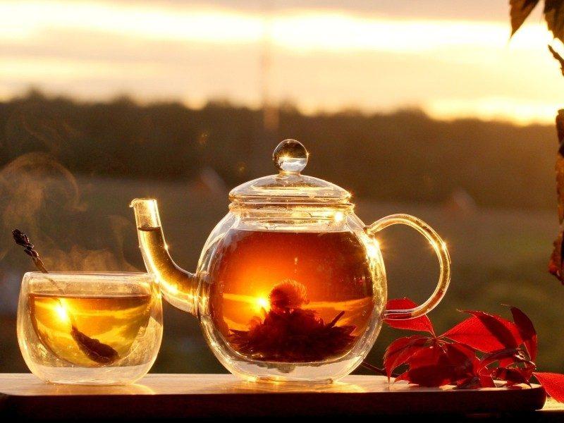 Für den Geschmacksinn: Tee und Früchte