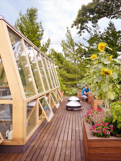 dachterrasse gestalten ideen tipps wohnung mit dachterrasse pflanzen