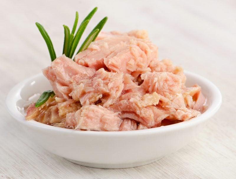 thunfisch rezepte thunfisch gesund thunfisch nähwerte thunfisch dose
