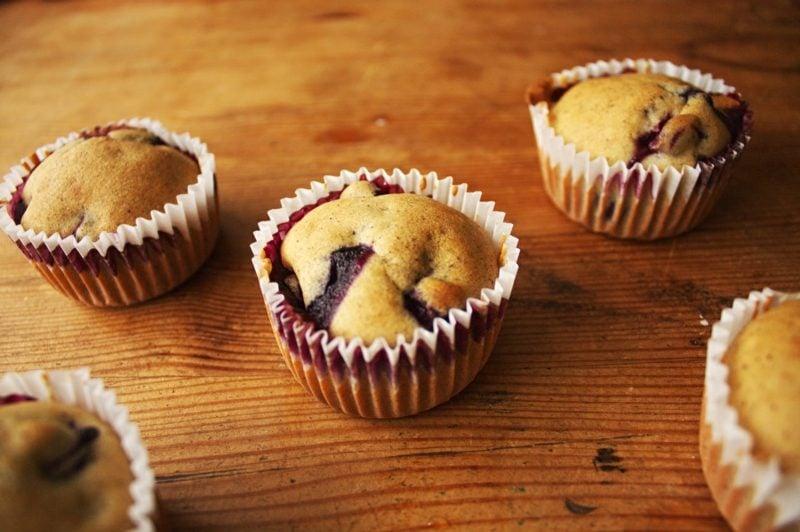 vegane schoko muffins
