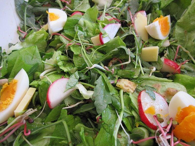 Low Carb Rezepte zum Abendessen Eichblattsalat mit Rucola, Käse, Eiern und Radieschen