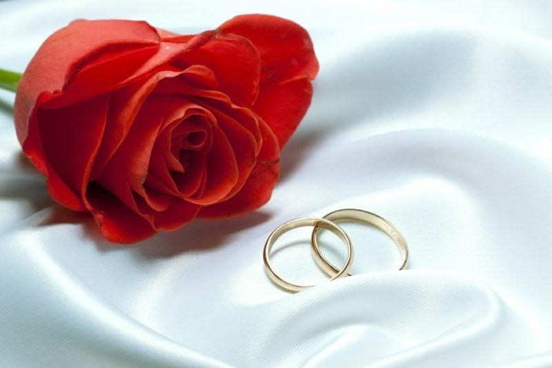 Glückwunsch zur Hochzeit Rose Eheringe