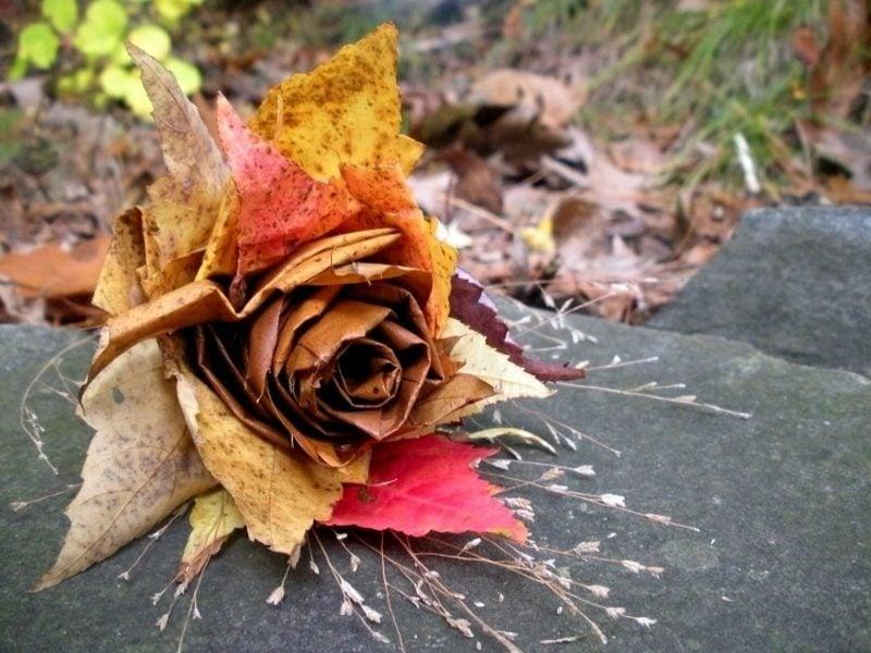 Herbstdeko Rose aus Herbstlaub selber machen