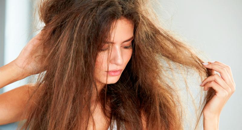 Haarkur Olivenöl trockene Haare