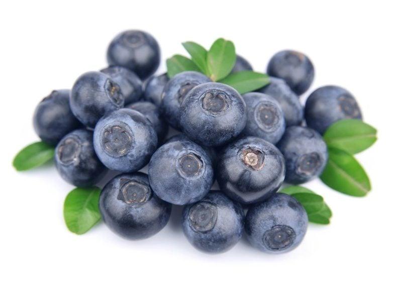 Heidelbeeren Vorteile Gesundheit
