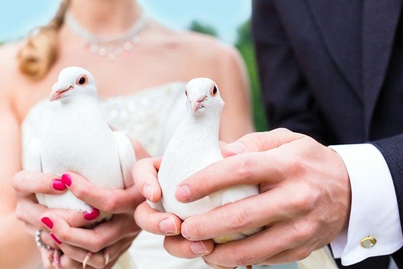 schöne Sprüche Liebe Hochzeit