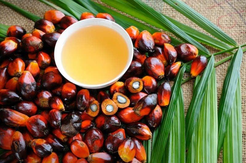 Lebensmittel ohne Palmöl